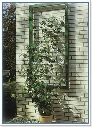 Шпалера для растений и цветов своими